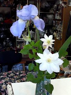 季節の花たち