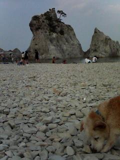 久しぶりの浄土が浜