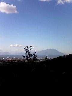 林檎と岩手山