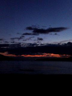 夜明けのワンコ