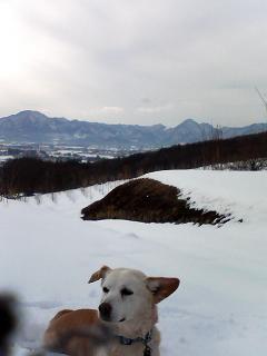 雪と 夕暮れ