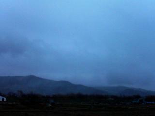 雨の休日。