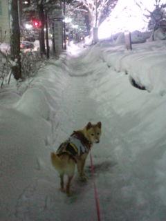 雪道の歩き方。